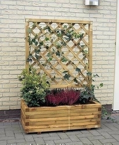 avec treillis arc lierre 80 bac fleurs avec treillis arc lierre pictures to pin on pinterest. Black Bedroom Furniture Sets. Home Design Ideas