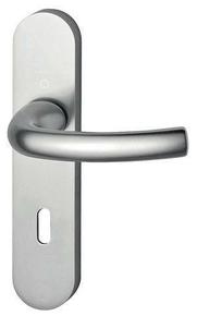 Ensemble de poignées de porte TOKYO sur plaque aluminium anodisé aspect inox avec trou de clé - Gedimat.fr