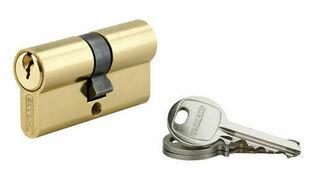 Cylindre profilé européen laiton 30x30mm - Gedimat.fr