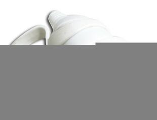 Prolongateur de branchement électrique plastique à anneau femelle 2 pôles + terre 16A sortie droite coloris blanc - Gedimat.fr