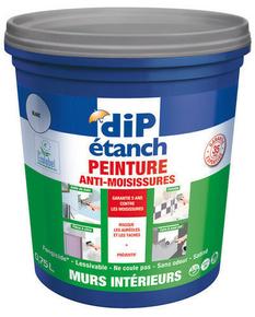 Peinture décorative anti-humidité DIP ETANCH 0,75L coloris blanc - Gedimat.fr