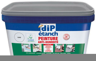 Peinture décorative anti-humidité DIP ETANCH 2,5L coloris blanc - Gedimat.fr