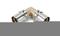 Coude à sertir pour tube multicouches NICOLL Fluxo angle 90° diam.63mm - Gedimat.fr