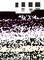 Ciseaux à bois avec lame d'affûtage lot de 4 pièces - Gedimat.fr