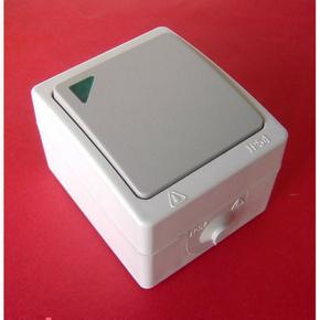 Poussoir simple série AKYA étanche 10A 220V coloris gris clair avec voyant témoin d'allumage - Gedimat.fr