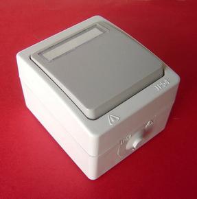Poussoir simple série AKYA étanche 10A 220V coloris gris clair avec porte étiquette - Gedimat.fr