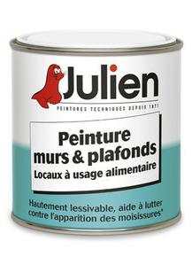 Peinture murs et plafonds Alimentaire JULIEN bidon de 2,5 litres blanc - Gedimat.fr