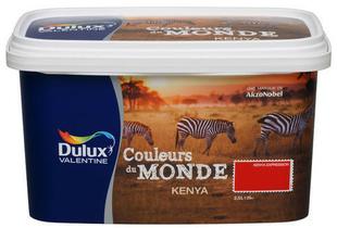Peinture acrylique murale couleur du monde aspect satin - Dulux valentine couleur du monde kenya ...