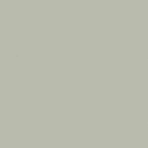Feuille de stratifié HPL avec Overlay ép.0.8mm larg.1,30m long.3,05m décor Argent finition Perlé - Gedimat.fr