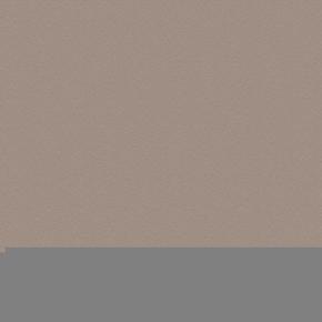 Feuille de stratifié HPL avec Overlay ép.0.8mm larg.1,30m long.3,05m décor Uraniium finition Perlé - Gedimat.fr