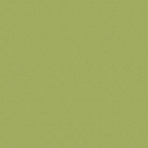 Panneau de Particule Surfacé Mélaminé (PPSM) ép.19mm larg.2,07m long.2,80m Olive finition Velours Bois poncé - Gedimat.fr