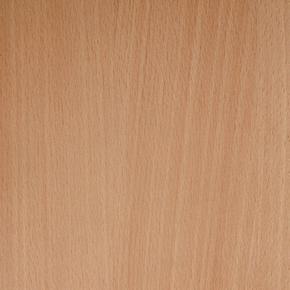 Panneau de Particule Surfacé Mélaminé (PPSM) ép.19mm larg.2,07m long.2,80m Hêtre Purpurea finition Mat - Gedimat.fr