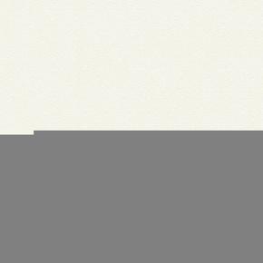Feuille de stratifié HPL sans Overlay ép.0.8mm larg.1,30m long.3,05m décor Blanc Yukon finition Perlé - Gedimat.fr