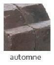 Bordure pavé tambourinée Mambo dim.20x10cm (10x15) coloris automne - Gedimat.fr