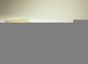 Dalle de plancher CTBS P4 ép.25mm larg.0,905m long.2,06m - Gedimat.fr