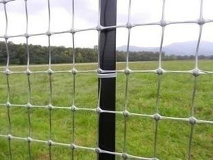 Filet pour clôture MILLENNIUM haut.1m rouleau de 10m coloris argent - Gedimat.fr
