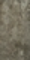 Carrelage pour sol intérieur en grès cérame émaillé DYNAMIC larg.30cm long.60cm coloris taupe - Gedimat.fr