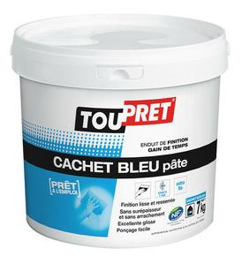 Cachet bleu pâte enduit de finition gain de temps TOUPRET - Gedimat.fr