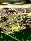 Coffre de volet roulant en fibre pour largeur tableau 2,40m - Gedimat.fr