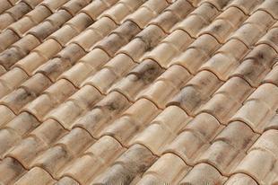 Tuile TBF ROMANE CANAL coloris vieilli languedoc - Gedimat.fr