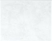 Carrelage pour mur en faïence TRAMA larg.20cm long.25cm coloris grigio - Brique terre cuite base POROTHERM T20 ép.20cm haut.24cm long.50cm - Gedimat.fr