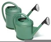 Arrosoir ovale LUXE 12l Vert - Outillage du jardinier - Plein air & Loisirs - GEDIMAT