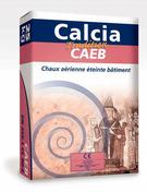 Chaux aérienne éteinte blanche i.design CAEB CALCIA sac 25kg - Double rive sous-faîtière 3/4 pureau pour tuiles ROMANE-CANAL coloris vieilli Languedoc - Gedimat.fr
