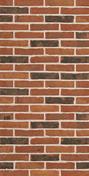 Plaquette de parement en terre cuite WFD long.21,5cm haut.5cm ép.2,5cm ligne moulée main coloris Olm - Bois Massif Abouté (BMA) Sapin/Epicéa traitement Classe 2 section 60x200 long.9m - Gedimat.fr