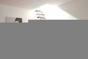 Escalier droit KARINA en acier plastifié blanc haut.2,28/2,82m marches en bois (hêtre) foncé finition verni - Porte d'entrée NOEMIE Aluminium laqué avec isolation totale de 120mm droite poussant haut.2,15m larg.90cm gris - Gedimat.fr