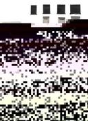 Ciseaux à bois avec lame d'affûtage lot de 4 pièces - Outillage du menuisier - Outillage - GEDIMAT