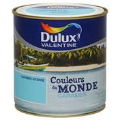 Peinture acrylique murale COULEUR DU MONDE aspect satiné pot de 500ml coloris Caraïbes expression - Peintures - Peinture & Droguerie - GEDIMAT
