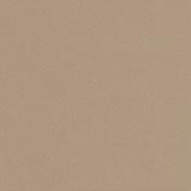 Panneau de Particule Surfacé Mélaminé (PPSM) ép.8mm larg.2,07m long.2,80m Laser finition Perlé - Panneaux mélaminés - Menuiserie & Aménagement - GEDIMAT