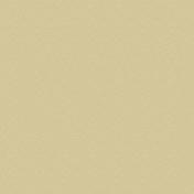Feuille de stratifié HPL sans Overlay ép.0.8mm larg.1,30m long.3,05m décor Barbadine finition Velours bois poncé - Panneaux stratifiés et décoratifs - Menuiserie & Aménagement - GEDIMAT