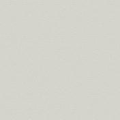Panneau de Particule Surfacé Mélaminé (PPSM) ép.8mm larg.2,07m long.2,80m Grimsey finition Velours Bois poncé - Tuile PLATE PRESSEE 27x41 JACOB coloris terre de Beauce - Gedimat.fr
