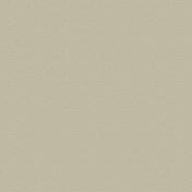 Panneau de Particule Surfacé Mélaminé (PPSM) ép.8mm larg.2,07m long.2,80m Asimine finition Velours Bois poncé - Panneaux mélaminés - Menuiserie & Aménagement - GEDIMAT