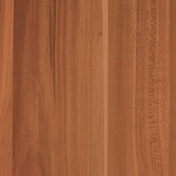 Feuille de stratifié HPL avec Overlay ép.0.8mm larg.1,30m long.3,05m décor Prunier perse finition Velours bois poncé - Panneaux stratifiés et décoratifs - Cuisine - GEDIMAT