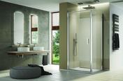 Porte pivotante LINEA haut.200cm long.80cm poli brillant verre transparent - Portes - Parois de douche - Salle de Bains & Sanitaire - GEDIMAT